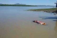 নাফ নদীতে  নৌকাডুবি, চার রোহিঙ্গার লাশ উদ্ধার