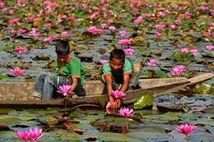 দেখে আসুন জৈন্তাপুর ডিবির বিল