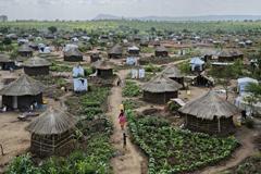 উদ্বাস্তু-শরণার্থীদের স্বাগত জানায় যে দেশ