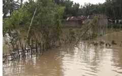 মৌলভীবাজারে নদীর প্রতিরক্ষা বাঁধ ভেঙ্গে শতাধিতক গ্রাম প্লাবিত