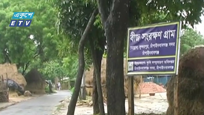 চাঁপাইনবাবগঞ্জের বীজগ্রাম (ভিডিও)