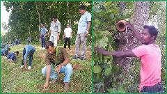নবাবগঞ্জের জাতীয় উদ্যানের সৌন্দর্য ফিরিয়ে আনতে উদ্যোগ