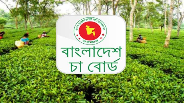 চাকরি দেবে বাংলাদেশ চা বোর্ড