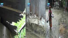 ময়মনসিংহে বিদ্যাগঞ্জ সরকারী আবাসন বসবাসের অনুপযোগী (ভিডিও)