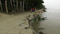 সিরাজগঞ্জে যমুনার তীর সংরক্ষণ বাঁধে ৪০ মিটার ধস