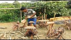 গাছের শিকড়ে আসবাবপত্র বানিয়ে ভাগ্য বদল (ভিডিও )