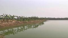 রাজশাহীতে ফসলি জমিতে চলছে পুকুর খনন (ভিডিও)