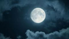 তাক লাগানো `ফ্লাওয়ার মুন` ঘিরে অজানা ৪ তথ্য