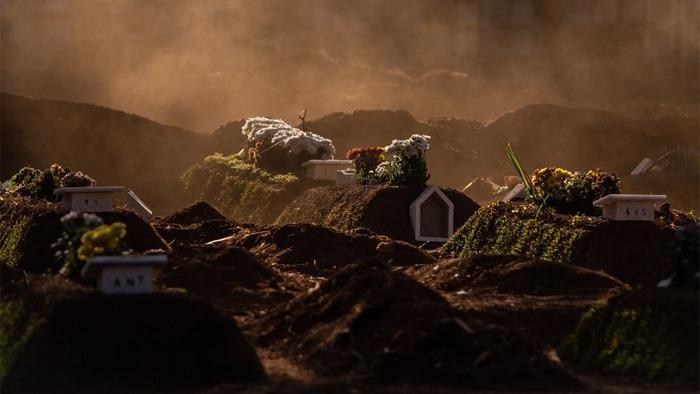ব্রাজিল সাও পাওলের ভিলা ফোরমাস সেমিট্রিতে সমাধীসৌধের উপর ফুল দেওয়া হয়েছে- ব্লুমবার্গ