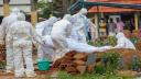 করোনায় ৪ লাখের বেশি মানুষের মৃত্যু
