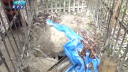 দিনাজপুরে রাতে চুরি হচ্ছে নরকংকাল (ভিডিও)