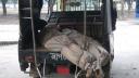 নবাবগঞ্জে গোলাগুলিতে ২ ডাকাত নিহত, ৪ পুলিশ আহত