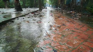 দিনভর বৃষ্টিতে মোংলায় বেড়েছে শীত