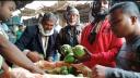 কাঙ্খিত দাম না পাওয়ায় শার্শার বেগুন চাষিরা হতাশ