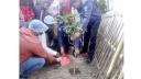 সামাজিক অবক্ষয় রোধে কুড়িগ্রামে 'গ্রীণ ভিলেজ'র আত্মপ্রকাশ