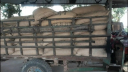জয়পুরহাটে ভিজিডি'র ১০২ বস্তা চালসহ আটক ২