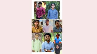 কুমিল্লা বিশ্ববিদ্যালয় সাংবাদিক সমিতির নির্বাচন সম্পন্ন