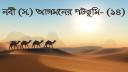 হুদায়বিয়া: নবীজীর অহিংস নীতির ঐতিহাসিক সাফল্য