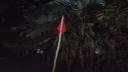 সরকারি কর্মকর্তার বাড়িতে লাল পতাকা, কোয়ারেন্টাইনে ৫৬৪