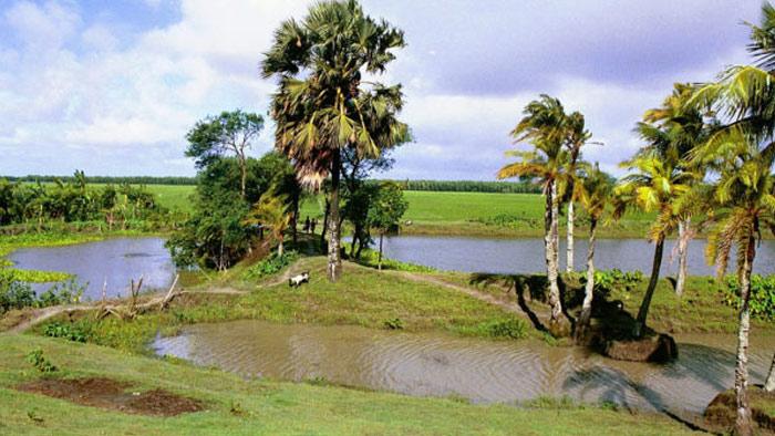 বাংলার এক গ্রামের মনোরম দৃশ্যপট- সংগৃহীত