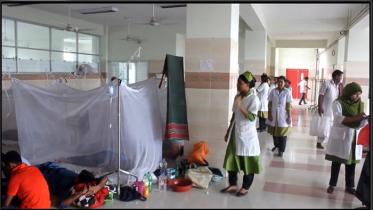 চাঁপাইনবাবগঞ্জে ২৪ ঘণ্টায় আরও ৮ ডেঙ্গু রোগী শনাক্ত