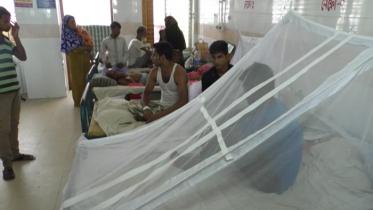 সিরাজগঞ্জে ডেঙ্গু জ্বরে আক্রান্ত ১১ রোগী শনাক্ত