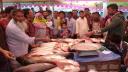 জয়পুরহাটের কালাইয়ে জমজমাট মাছের মেলা
