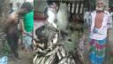 রূপগঞ্জে মাছ চাষিকে গাছে বেঁধে নির্যাতন, অতঃপর