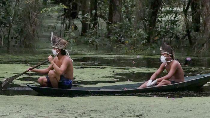 ব্রাজিলের সাটিরি-মাওই নৃগোষ্ঠিতে করোনার প্রভাব। আমাজোনাস রাজ্যের আরিউ নদী। ছবি- বিজনেস ইনসাইডার