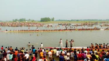 বেলকুচিতে মাঝি-মাল্লাদের বৈঠার ছন্দে উৎফুল্ল যমুনার দুই তীর