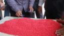 টেকনাফে তিন লাখ ইয়াবাসহ মিয়ানমারের ৭ নাগরিক আটক