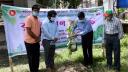 শোকের মাসে বরগুনা জেলা প্রশাসনের বৃক্ষরোপণ