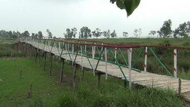 গ্রামবাসীর জন্য কলেজ ছাত্রদের কাঠের সেতু তৈরি