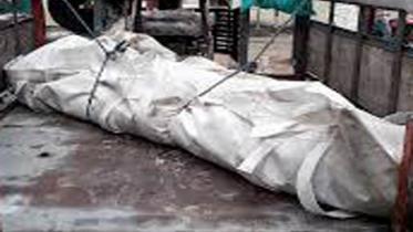 ঝালকাঠিতে পল্লী চিকিৎসকের রহস্যময় মৃত্যুতে চাঞ্চল্য