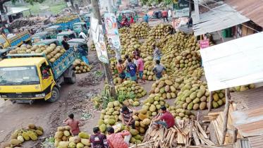 মিরসরাইয়ে মৌসুমী ফলের জমজমাট বাজার
