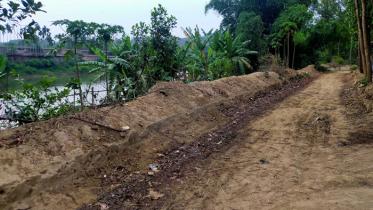 অভ্যন্তরীণ সড়ক নির্মাণ, বিজিবি-বিএসএফ বৈঠকেও মেলিনি সমাধান