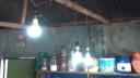 ময়মনসিংহে বিদ্যুৎ চুরির মহোৎসব (ভিডিও)