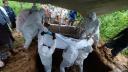 লোহাগাড়ায় করোনায় মৃত সৌদি প্রবাসীর দাফনে কোয়ান্টাম