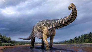 বিজ্ঞানীদের তালিকায় পৃথিবীর সবচেয়ে বড় ডাইনোসর