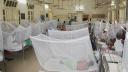 ডেঙ্গু আক্রান্ত আরও ২৫৪ জন হাসপাতালে