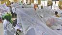 ডেঙ্গু আক্রান্ত আরও ২০১ জন হাসপাতালে