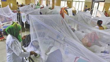 ডেঙ্গু আক্রান্ত আরও ১৭২ জন হাসপাতালে