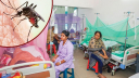 ডেঙ্গু আক্রান্ত আরও ২৪১ রোগী হাসপাতালে