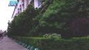 বিশ্বের রোল মডেল বাংলাদেশের ৩৯ কারখানা