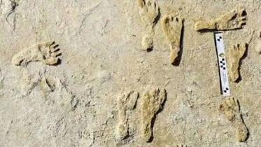 লেকের তলদেশে মিলল ২৩ হাজার বছর আগের পায়ের ছাপ!