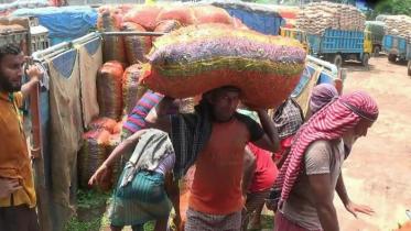 হিলিতে কাঁচামরিচের দাম বেড়েছে কেজিতে ২০ টাকা
