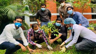 'মুজিব বর্ষ' উপলক্ষ্যে দেশব্যাপী বৃক্ষরোপন করছে যুবলীগ