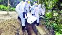 করোনায় আরও ৬৩ জনের মৃত্যু