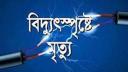 শার্শায় বিদ্যুৎস্পৃষ্টে স্কুলছাত্রীর মৃত্যু