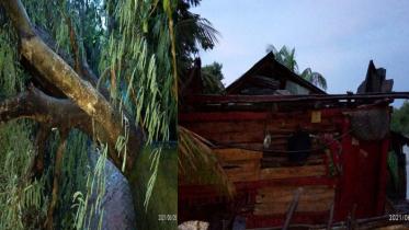 মোংলায় আকস্মিক ঝড়ে ঘরবাড়ী-গাছপালা বিধ্বস্ত